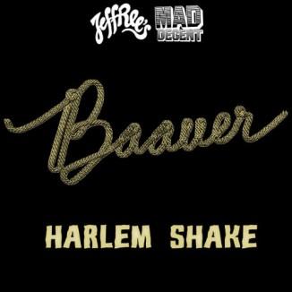 Baauer-Harlem-Shake-500x500